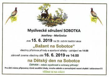 ms_sobodka_-_dtsk_den.jpg